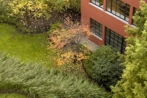 Wirtz International Landscape Architects - Espace Jacqmotte, Brussels (BE)